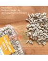 Sunflower Seeds ( Biji Bunga Matahari )