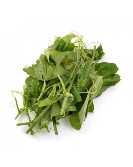 Organic Chayote Leaves 200gr ( Pucuk Labu Siam )