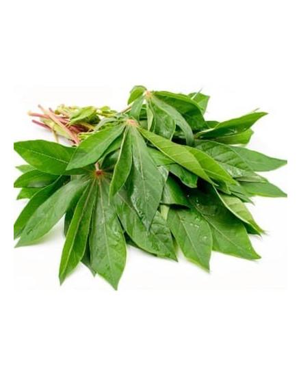 Organic Cassava Leaves 200gr ( Daun Singkong )