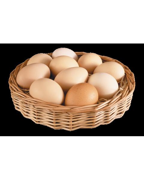 Telur Ayam Kampung Herbal 10pcs