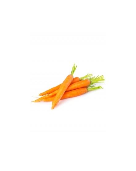 Organic Carrot ( Wortel Organik )