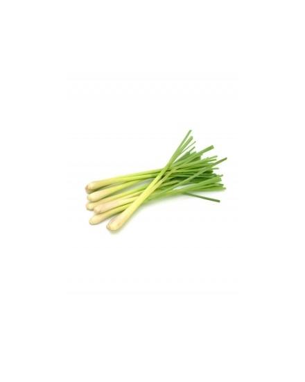 Organic Lemongrass ( Sereh Organik )