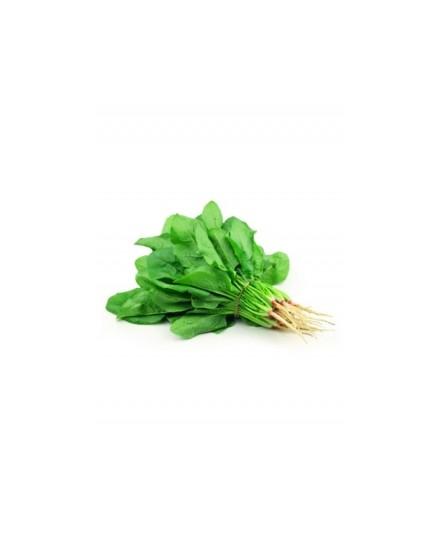 Organic Spinach ( Bayam Organic )