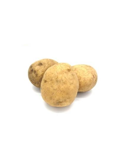 Potato ( Kentang )