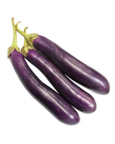 Eggplant ( Terong Organik ) 1 kg