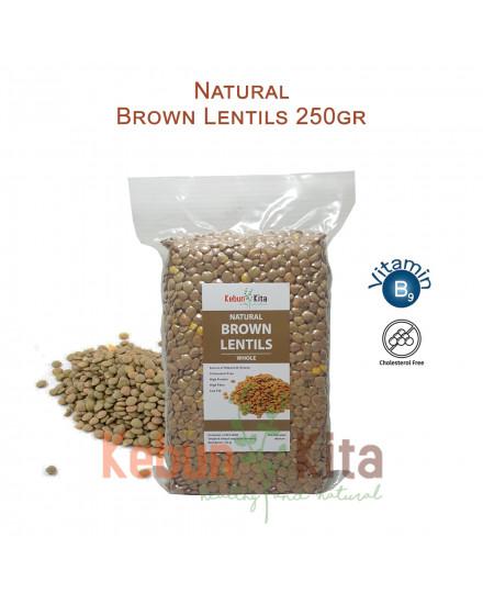 Lentil Coklat ( Brown Lentils )
