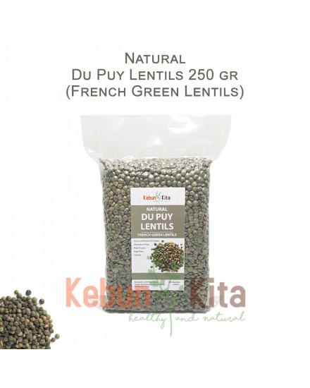 Du Puy Lentils - French Green Lentils - Lentil Hijau