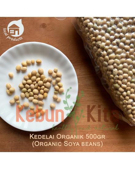 Kacang Kedelai Organik