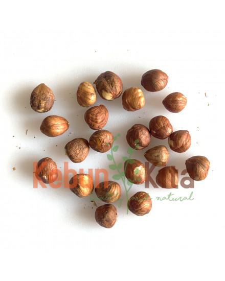 Raw Hazelnuts ( Hazelnut Mentah )